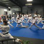 Traditional Korean Martial Arts Program